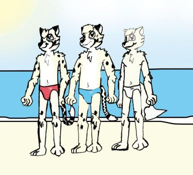 Levion Trenton and Kyrie on a Beach in Norway by DPCBlueFox1991