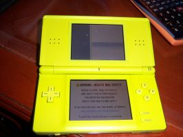 Nintendo Ds Lite problems by Icoria