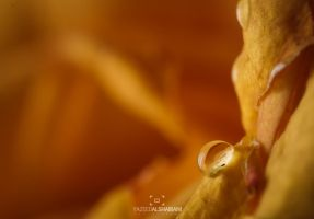 new droplet II by YazeedART