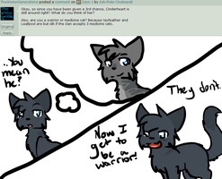 Ask 2 by Ask-Male-Cinderpelt