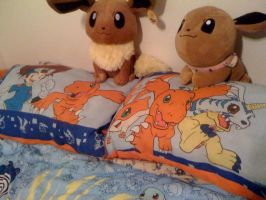 Digimon Pillow and Eevee Plush by Eevee-Kins