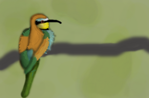 European bee-eater by Swallow6