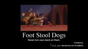 Foot Stool Dogs by TonyWDA
