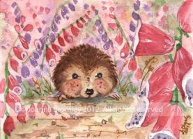 ACEO Foxgloves & Hedgehog by JoannaBromley