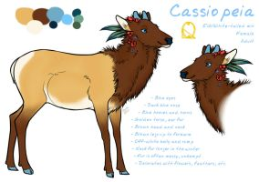 Cassiopeia Reference 2014 by Cro-Magna