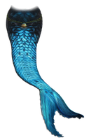 Mermaid tail png by manilu