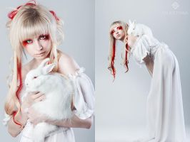WHITE RABBIT by KriSCole