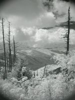 Down to the Valley-iR by redtailhawker