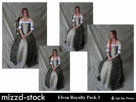 Elven Royalty Pack 3 by mizzd-stock