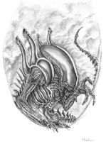 ALIEN drawing by Tom3k-S