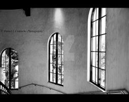 3 windows by MachoDLS
