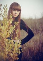 Autumn_2 by Misty-AnGel