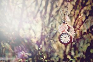 Wheel of Time by Cixipod