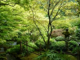 Japanese Garden 3 by raindroppe
