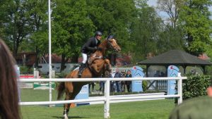 Show Jumping #5 by BlueWaterValley