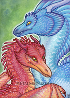 Fire and Water Dragons ACEO by thedancingemu