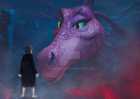 Bilbo and The Dragon by momofukuu