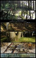 Stock - Forests and Lost Beach by Thurgood
