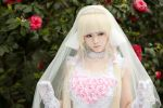 Chii - Chobits by kirawinter