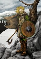 Viking by arthelius