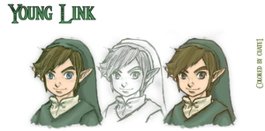 Twilight Princess Young Link by Dosiguales