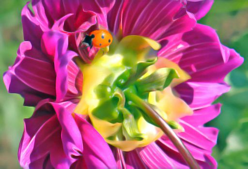 Ladybug - purple dahlia by n0ave