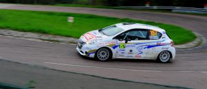 PEUGEOT 208 by PHIL3408