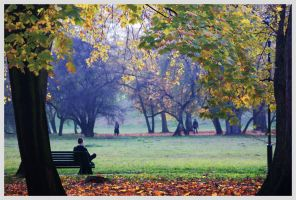 Autumn is here by kokia