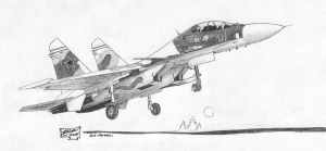 Su-30MKI Russian Fighter Jet by redguard
