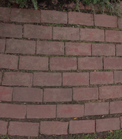 Brick Path 2 by WDWParksGal-Stock