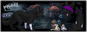 Certain State of Mind : Machika Ref Sheet by Artsywolven