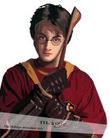 Harry Potter in Quidditch by llvllagic