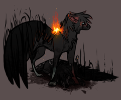 Ignite the fireflies. by solitaryVagrant