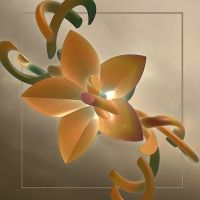 Sunday flower by GLO-HE