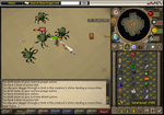 Runescape: 1 Hitting a Kalphite Soldier with Keris by IdealChaos