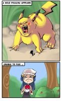 Joys of a Pokemon Trainer by kangel