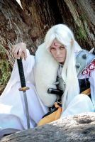 Sesshomaru III by nadyasonika