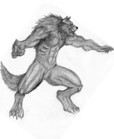 Werewolf - worgen - colored by Music-Energy