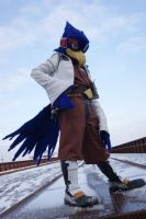 Falco cosplay by olween