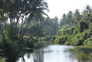 River Goa by RixResources