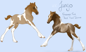 4515 Jango Star by BH-Stables