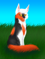 Redtail by RiverBelle