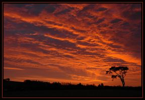 Big Red by gordonrae