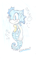 Starry the Seahorse by SonicStaryFan