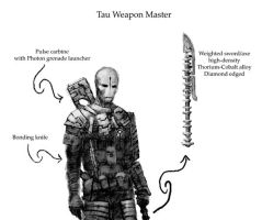 Tau weapon master by Thysane