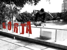 Kickflip over the Railing by ronankelly