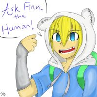 Ask Finn the Human by cjwolf207