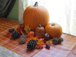 stock - pumpkin display by ribcage-menagerie