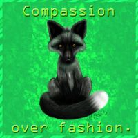 Compassion over fashion by flash-gordonette