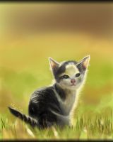 Little Kitty by Nyra119